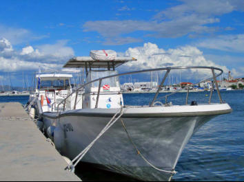 boats for dive trips